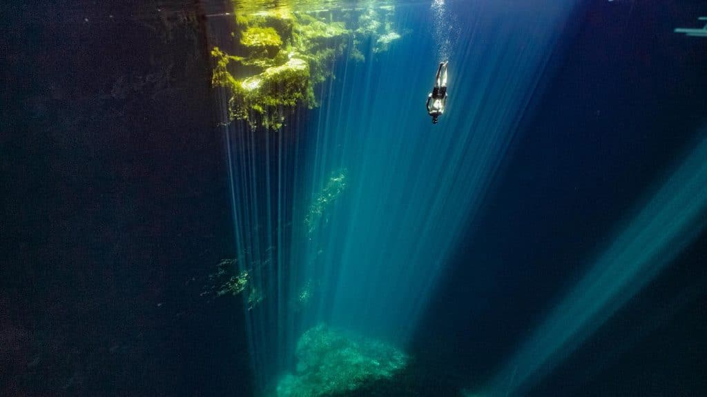 Freediving Courses and Speaker
